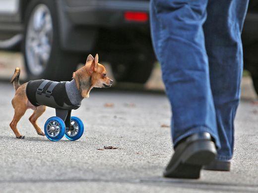TurboRoo wheelchair