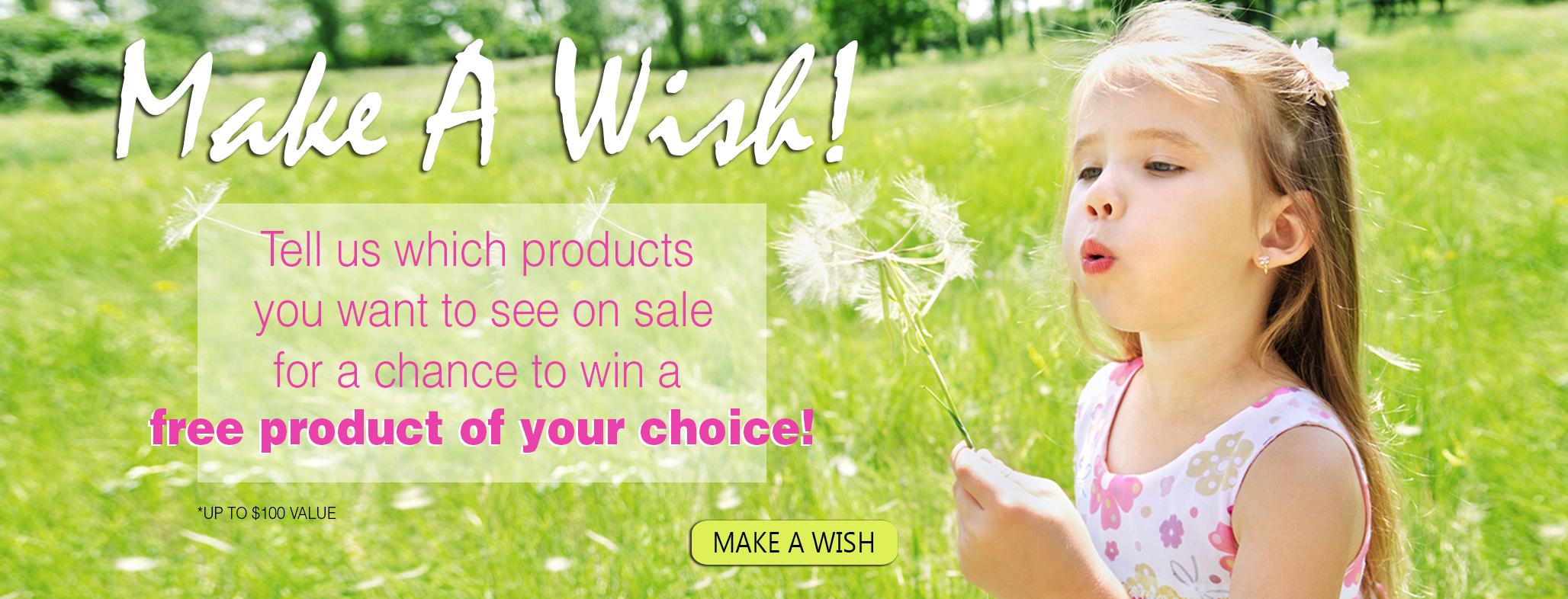 make.a.wish.2017